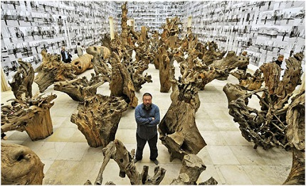 Ai Wei wei -Hechar Raíces