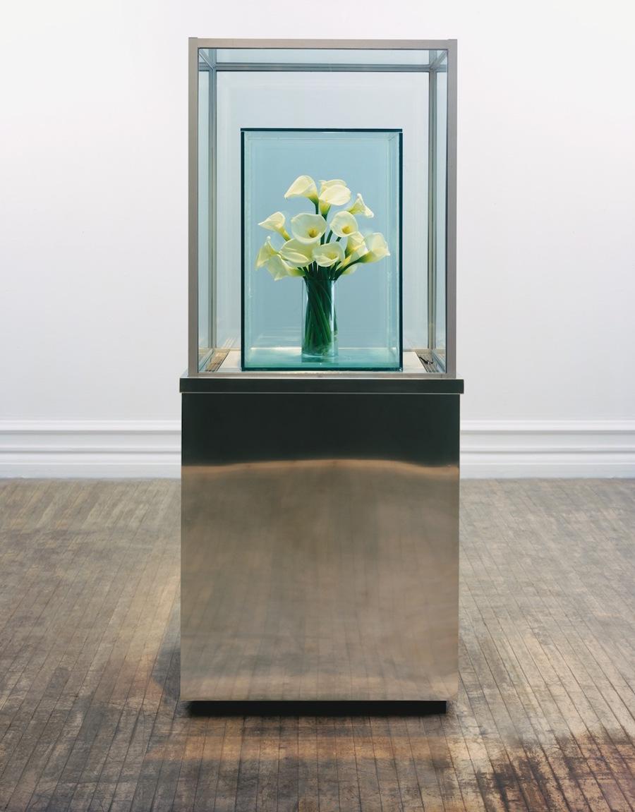 Marc Quinn. Eternal Spring (Lilies) 1998