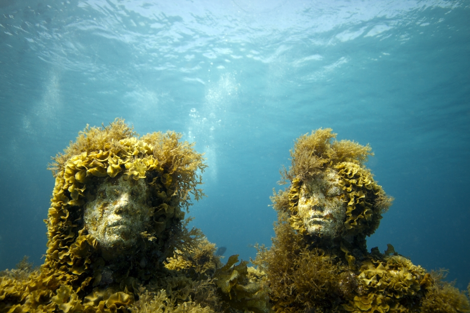 silent evolution. Jason deCaires Taylor