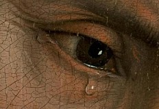 Tears in Van der Weyden's Deposition of Christ