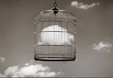 Chema Madoz. A photographer of few words