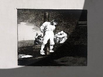 Broken Images: Goya and Farideh Lashai